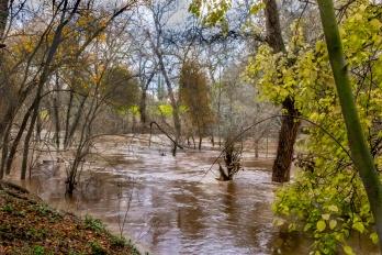 """Modesto Floods"""